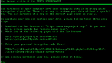 The State of Cyber Security – Ransomware PETYA